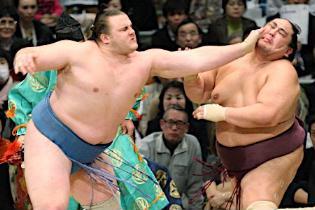 100326 sumo.jpg